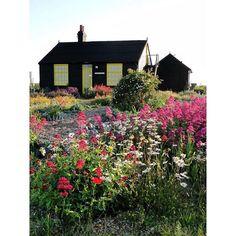 Derek Jarman's incredible modern cottage garden in Dungeness, England. Seaside Garden, Garden Cottage, Home And Garden, Landscape Design, Garden Design, Cabins And Cottages, Dream Garden, Garden Inspiration, Garden Ideas