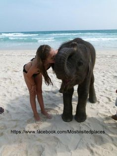 you can swim with elephants in Thailand!