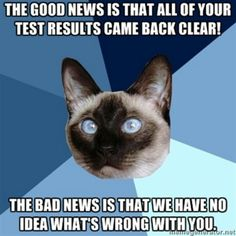 The good news is that all of your test results came back clear! The bad news is that we have no idea what's wrong with you. #ChronicIllnessCat