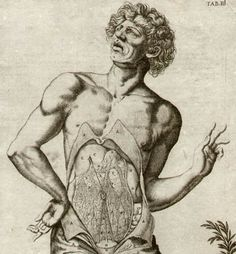 """INSIDE STORY: Detail of an engraving from """"De humani corporis fabrica libri decem,"""" 17th century anatomy of the human body. This set of engravings advanced medical science when it was compiled in 1627 by the physician Daniel Bucretius from two unpublished works. Bucretius also commissioned some engravings from Odoardo Fialetti, a protege of the great painter Tintoretto."""