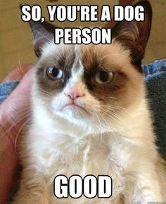 Good!  ~Grumpy Cat