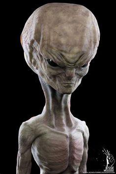 Extraterrestre Arte Alien, Alien Art, Aliens And Ufos, Ancient Aliens, Alien Creatures, Fantasy Creatures, Science Fiction Kunst, Alien Life Forms, Alien Aesthetic