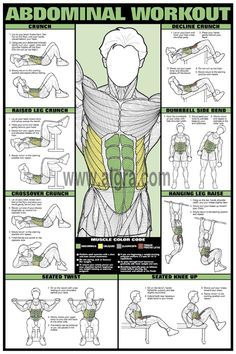 Abdominal Workout Poster