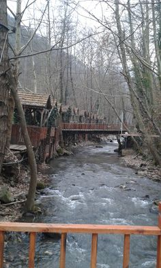 Wooden Houses in İzmit Mountains