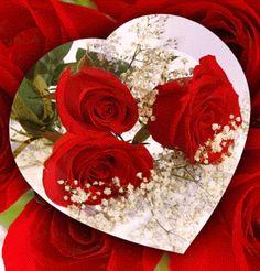 A szeretet nem azért van ingyen mert semmit sem ér, ha nem mert… Love Heart Gif, Love You Gif, Love You Images, Roses Gif, Flowers Gif, Good Night Gif, Good Night Image, Beautiful Red Roses, Beautiful Gif
