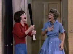 Laverne & Shirley - Another TV show most of us watched back in the 80's. Another fun family TV show.