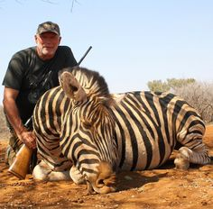 "10 Likes, 2 Comments - Riebelton Safaris (@riebelton_safaris) on Instagram: ""2016 Hunting highlights: Martin with a huge Zebra stallion! Bookings for 2018 are now open so…"""
