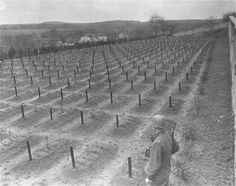 Lt. Alexander J. Wedderburn, photographer with the 28th Infantry Division, First US Army, views the cemetery at the Hadamar Institute, where victims of the Nazi euthanasia program were buried in mass graves.