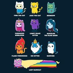 Catventure Time! - This official Adventure Time t-shirt featuring Finn, Jake, BMO, Princess Bubblegum, Lumpy Space Princess, Marceline, Flame Princess, Ice King, Gunter, and Lady Rainicorn is only available at TeeTurtle!