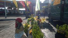 Kukkakauppias tänään shell pohjoinen | Kivapiha