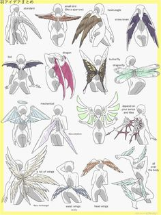 Ravage wings much lololololololololololololol Wings Sketch, Angel Sketch, Fairy Sketch, How To Draw Wings, How To Draw Dragons, Wing Anatomy, Dragon Anatomy, Wings Design, Anime Butterfly