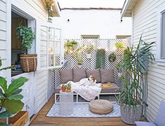 Best and Gorgeous small patio Design ideas for You Part 30 ; small patio ideas on a budget; Budget Patio, Small Backyard Landscaping, Backyard Patio, Fence Landscaping, Backyard Ideas, Outdoor Spaces, Outdoor Decor, Outdoor Plants, Small Patio Spaces