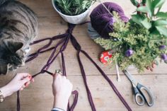 Take Courage: DIY Macrame Plant Hanger