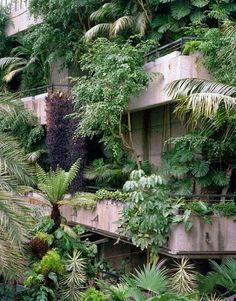 The Barbican, London's salute to misbegotten brutalism, part fail, part success. Love the interior jungle world that's pretty much too humid all year round.