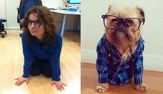 ¡Guau! qué perra vida @Cristina Gil Franco