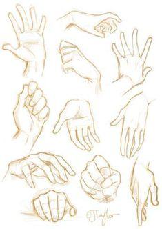 Como desenhar mãos Um tutorial de arte - Arte no Papel Online Hand Drawing Reference, Anime Poses Reference, Anatomy Reference, Sitting Pose Reference, Sword Reference, Female Pose Reference, Character Reference, Anatomy Sketches, Anatomy Drawing