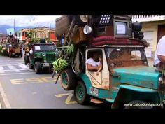 ▶ Concurso del Yipao Caicedonia 103 Años - YouTube