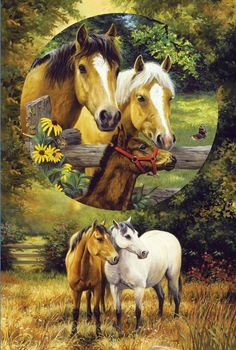 Country Horses by Linda Picken