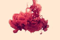 I've emailed Alberto Seveso - love his ink work!