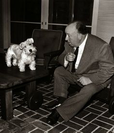 """Hitchcock adoraba a los perros, y junto a sus adoradas mascotas llegó a protagonizar algunos de sus cameos más famosos. Aunque le gustaban los perros una de sus frases mas recordadas es esta: """"Nunca trabajes con niños, con perros o con Charles Laughton"""""""