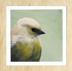 Putting The Whole Hideous Thing Behind Me By Blogging About It - 8 x 8 bird FINE ART PRINT. 28.00, via Etsy.