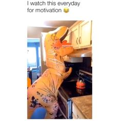 Funny memes videos