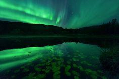 #9 Lilypond Lightshow by Arild Heitmann© on 500px