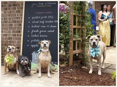 back yard wedding >> Cute for your lil best friends.