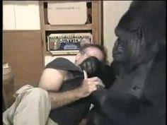 Robin Williams Habla Con Una Gorila Y No Creerás Lo Que Ella Le Pide Que Haga