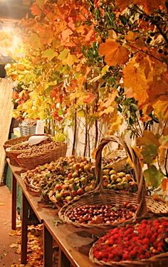 "This is a beautiful idea for a wedding.  A ""snack"" station/table just for nuts, apples, etc..."