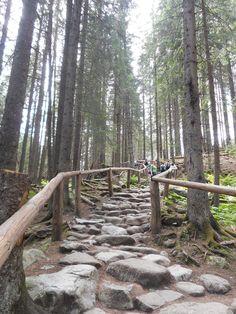 A shortcut on the route to Morskie Oko Lake (Sea Eye Lake) in Tatra Mountains about 25 km from famous town of Zakopane. Poland
