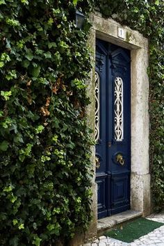 Navy door surrounded with ivy