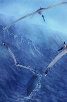 Geosternbergia follow a Tylosaurus knowing wherever the serpent goes a meal is ahead by Traher Ipteryx on DeviantArt