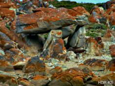 The Lion King Rock, south of Port Elizabeth, South Africa. Port Elizabeth, Oh The Places You'll Go, Fast Cars, South Africa, Cape, I Am Awesome, Lion, Southern, African