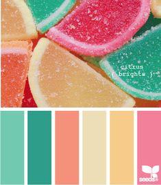 New Ideas Bedroom Paint Colors Bright Design Seeds Colour Pallette, Colour Schemes, Color Patterns, Color Combos, Color Trends, Teal Color Palettes, Summer Colour Palette, Bright Colour Palette, Paint Palettes