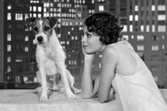 Meaty role: The Hollywood star pictured with actress Berenice Bejo in The Artist, one of his seminal films Jack Russell Terriers, Jean Dujardin, Brad Pitt, Pitbull, The Artist Movie, Artist Film, Especie Animal, Jack Russells, Actors