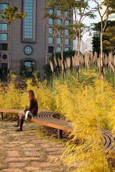 Pamela Burton & Company Park Landscape, Urban Landscape, Landscape Architecture, Landscape Design, Minimalist Landscape, Minimalist Garden, Commercial Landscaping, Modern Landscaping, Courtyard Design