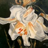 Aurora, Oil On Canvas, Lily, Touch, Check, Painting, Art, Craft Art, Painting Art