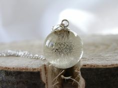 Dandelion Resin Necklace Real Dandelion Dandelion Ball by AgataUme
