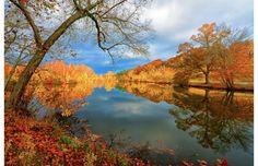 ✯Biltmore Estate Lake, Asheville, North Carolina, USA✯