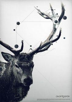 graphic designers, antlers, art, graphicdesign, graphics, avant garde, graphic design posters, poster designs, deer