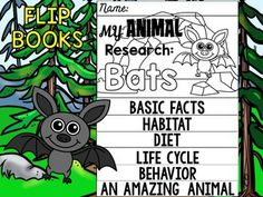 Little Lotus Teaching Resources Nocturnal Animals, Animal Books, Forest Animals, Writing Activities, Life Cycles, Research, Mammals, Habitats, Woodland