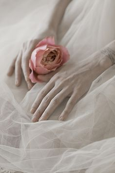 roses in my hands by monia merlo