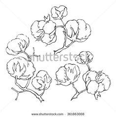 """Résultat de recherche d'images pour """"cotton drawing"""""""