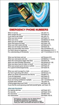 My favorite phone listings