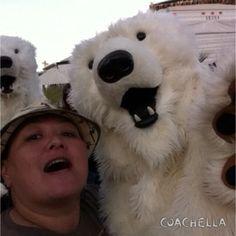 Polar bear selfie. Coachella 2014