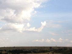 A cloud waves goodbye, spotted by our own Katherine McCartney in Kenya.