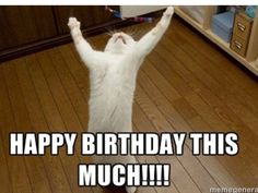 Get the best collection of Cat Memes, Funny Cat Memes & Happy Birthday Cat Memes a the funniest way to send birthday wishes to your friends & family. Cat Birthday Memes, Funny Happy Birthday Meme, Happy Birthday Quotes, Birthday Messages, Birthday Greetings, Cat Birthday Wishes, Birthday Pictures, Birthday Images, Spring Break Quotes
