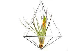 Mobile+Himmeli+Luftpflanzen-Heim+Alu+Prisma+Gr.+M+von+RAUMATA+auf+DaWanda.com