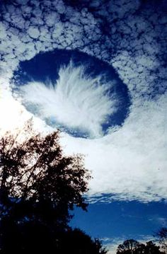 Punch Hole Clouds may appear as a circular or oval holes in a layer of supercooled clouds. Sometimes they assume a form of a perfect circle and persist for quite a long time, drifting together with the cloud layer. One explanation seems to blame the air traffic (the jet contrail intersections) combined with a thermal inversion (a circular motion of a rising warm air). (Image credit Joel Knain)